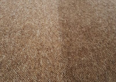 Close up of Carpet Clean