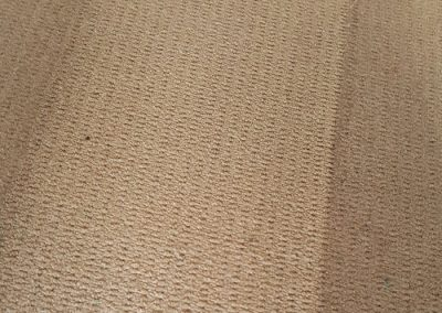 Close up of Short Pile Carpet Clean