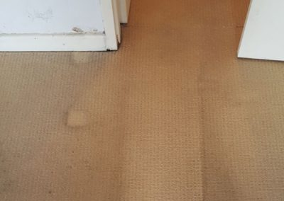 Bedroom entrance carpet cleaned
