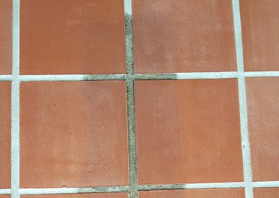 Close up of Teracotta Tiles half cleaned