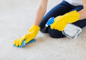 Don't ignore stains, clean your carpet right away.